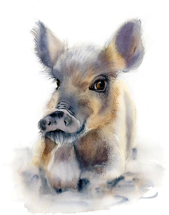 ©PaintisPassion-animal-watercolor-art-nursery-decor