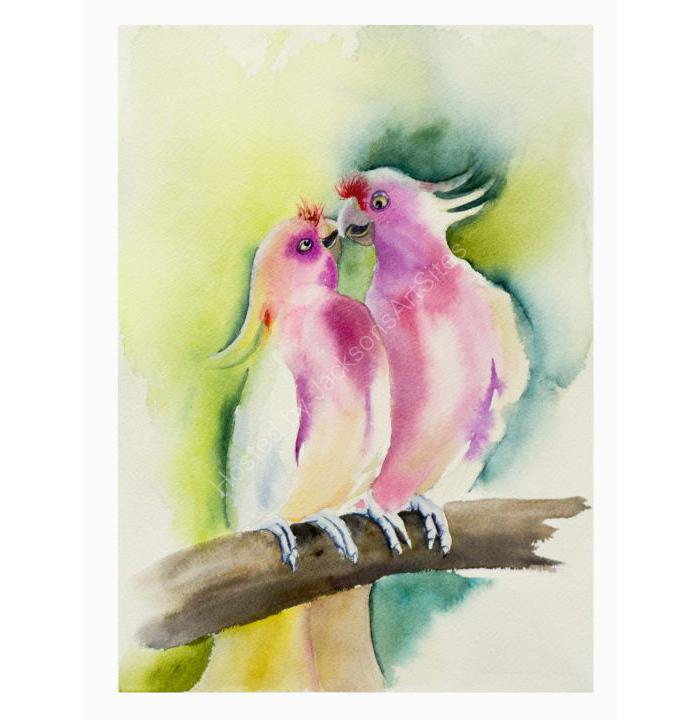 Parrot's-kiss