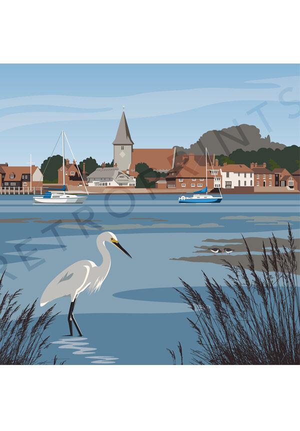 Bosham Little Egret