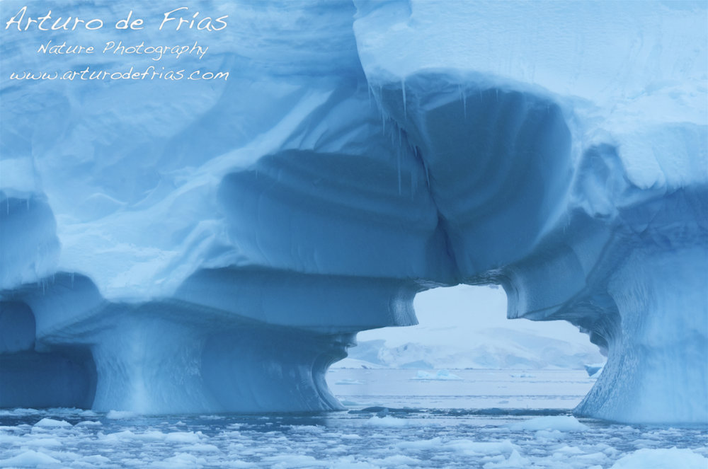 Blue Iceberg with Sculpted Tunnel