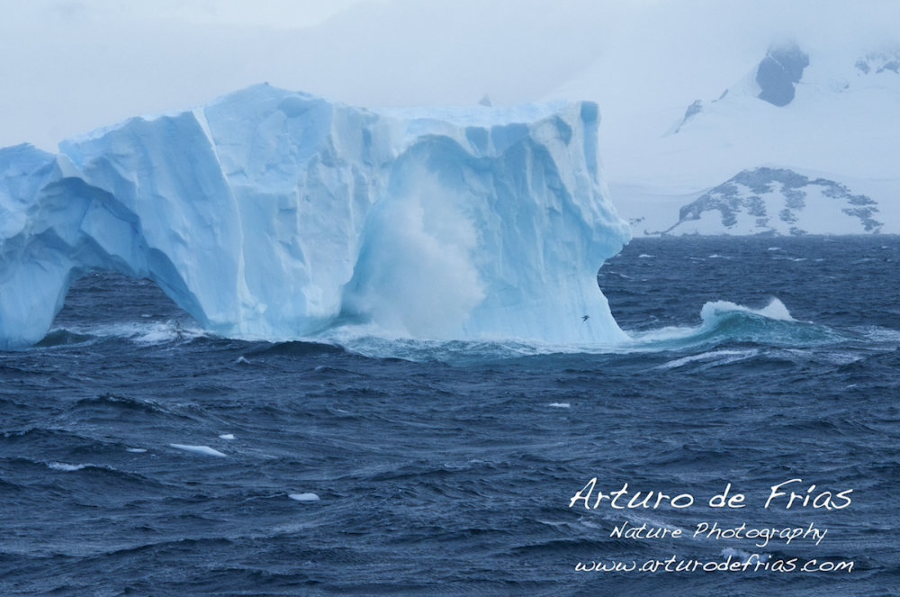 Iceberg Beaten by Waves