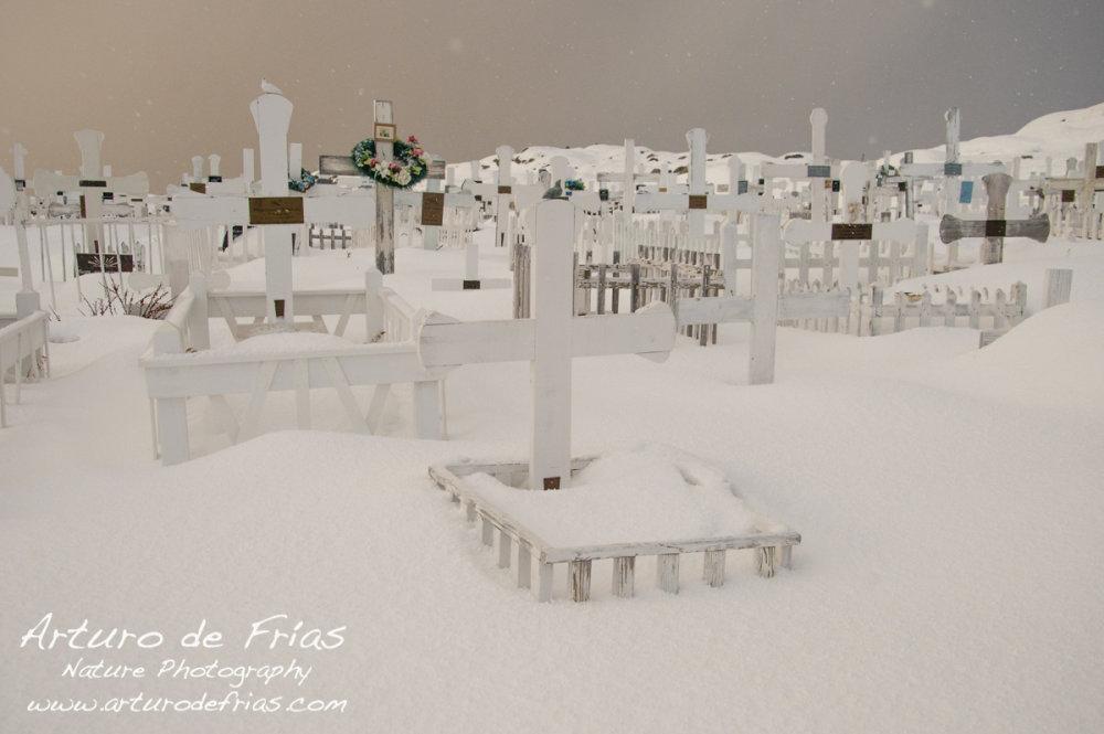 The nicest, whitest graveyard
