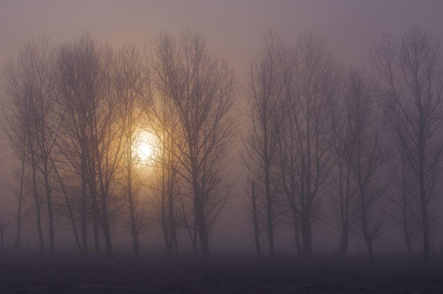 Castilla in Winter, Spain