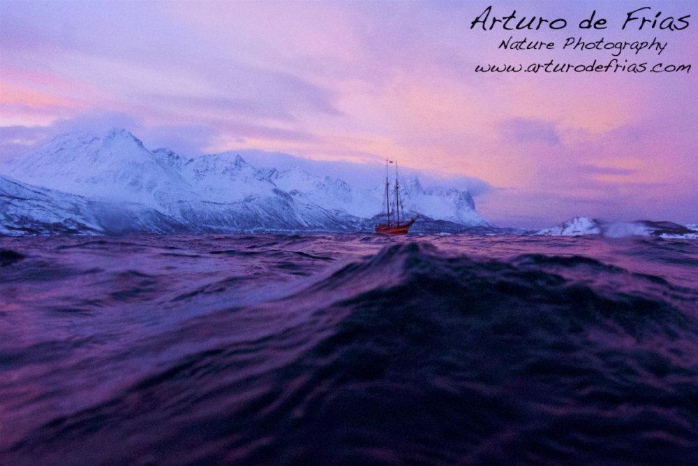 Winter Sky in the Fjord II