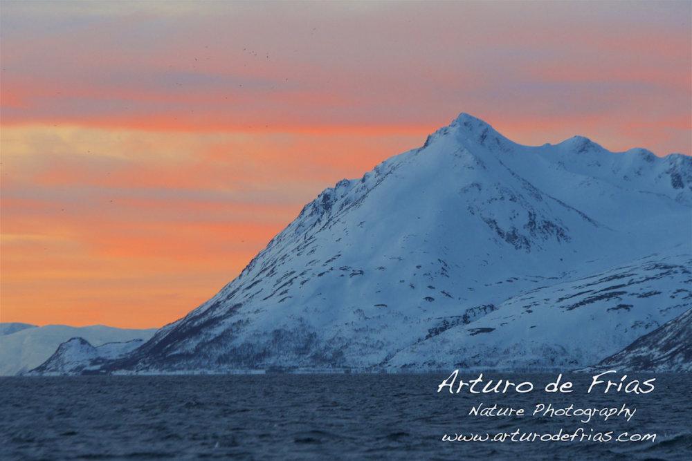 Winter Sky in the Fjord III