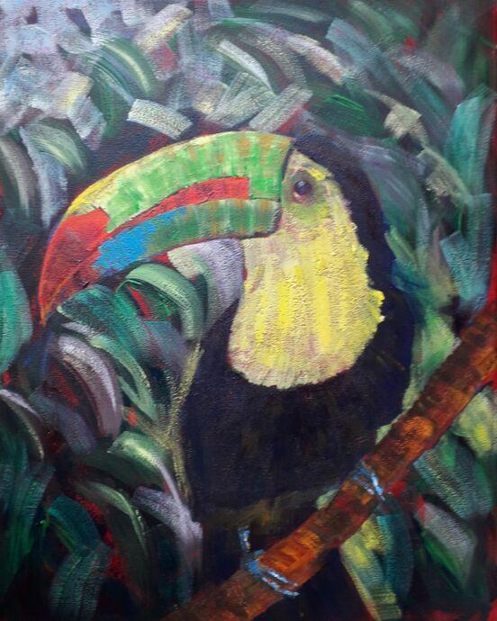 Toucan - Acrylic