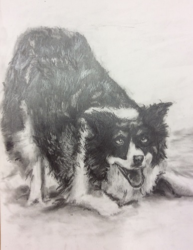 Janet's Dog