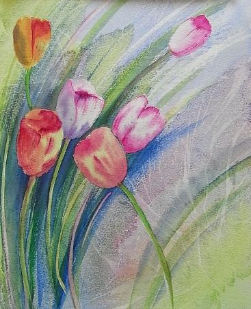 Tulip (watercolour)