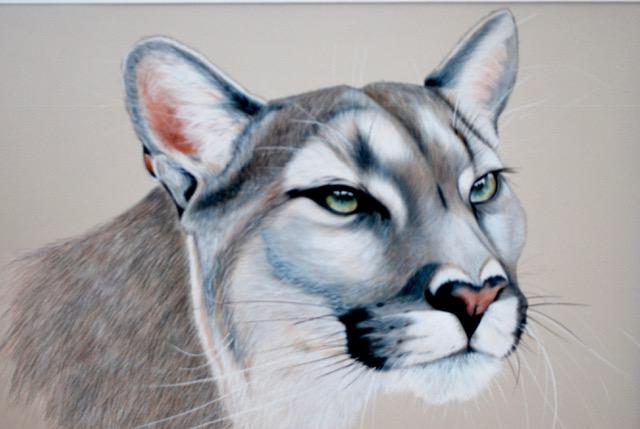Cougar by Desiree Hart