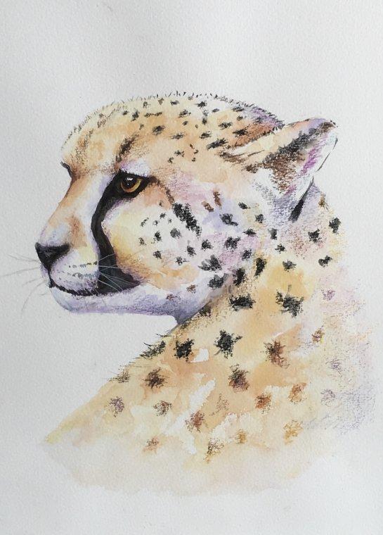 Cheetah by Nina Bryant