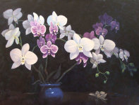 Orchids by Ted Poole