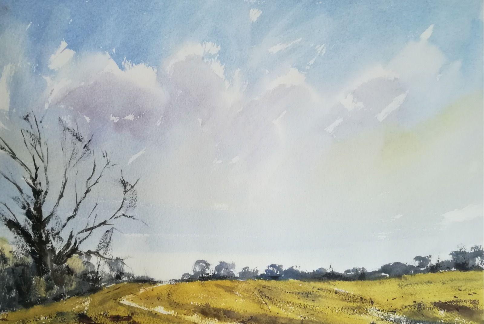 Field views towards the Teign Estuary, Devon