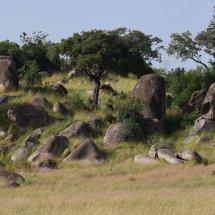 Kopjes,Serengeti