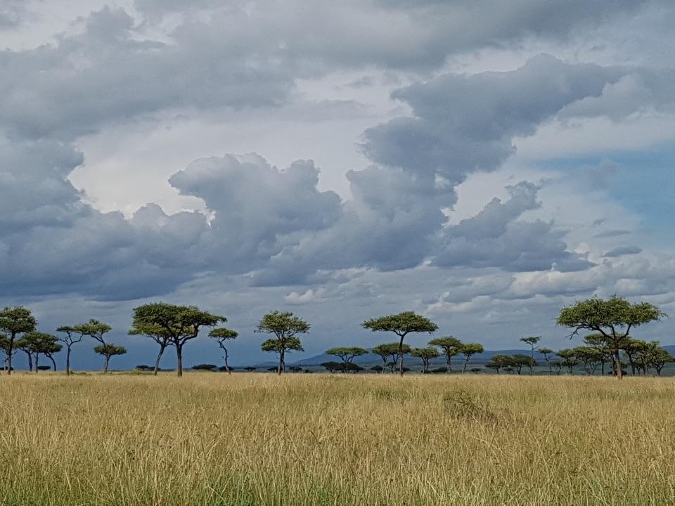 Landscape,Masai Mara,Kenya