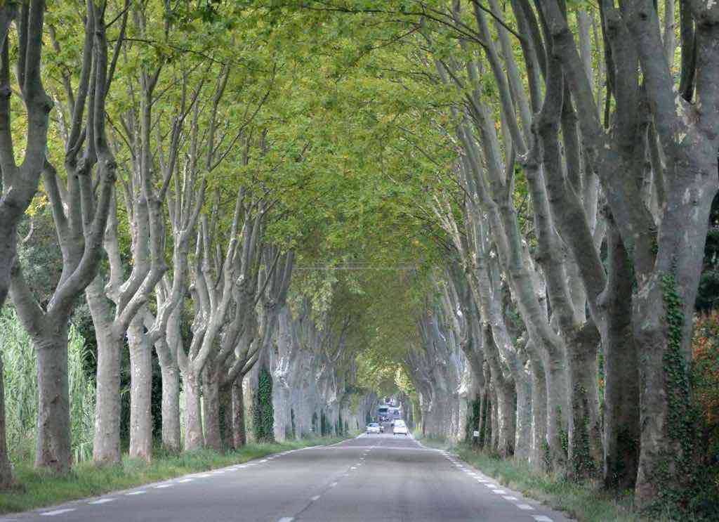 near Arles,France