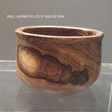 Laburnum small pot