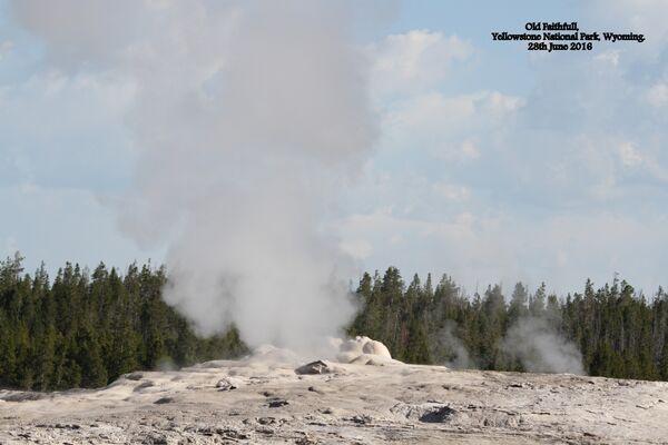 Old Faithfull ~ Yellowstone National Park