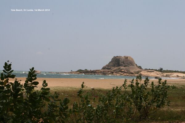 Yala Beach ~ Yala National Park
