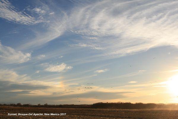 126a) Bosque Del Apache Clouds