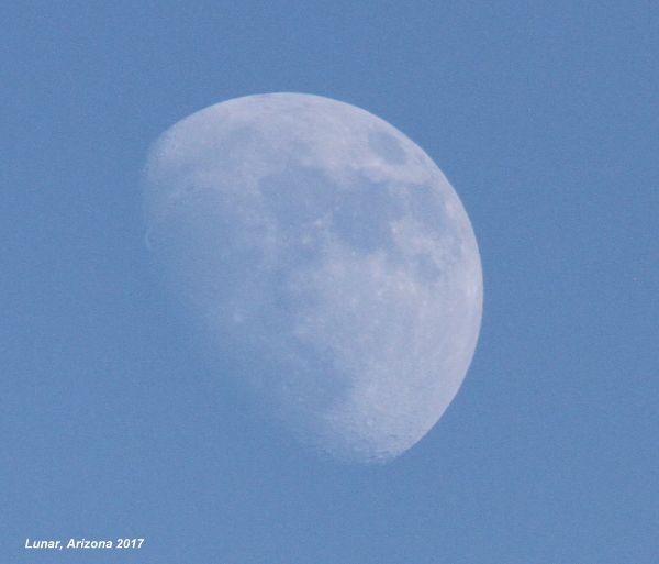 155) Lunar