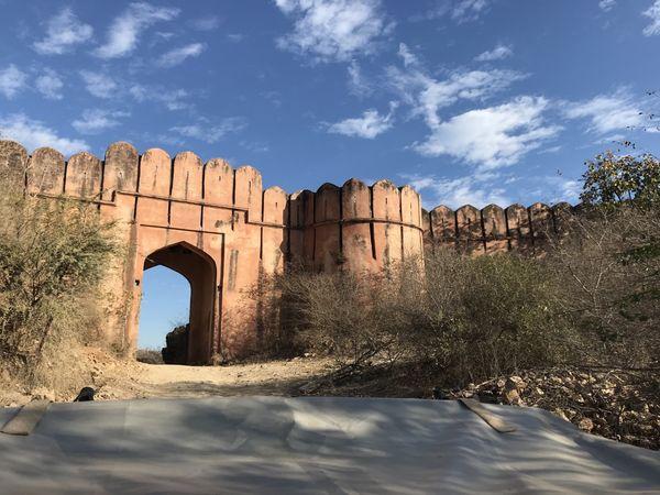 194. Ranthambhore Entrance