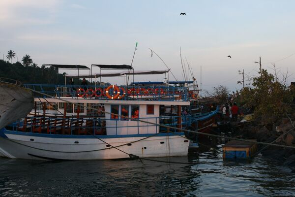 Blue Whale Watching Boat