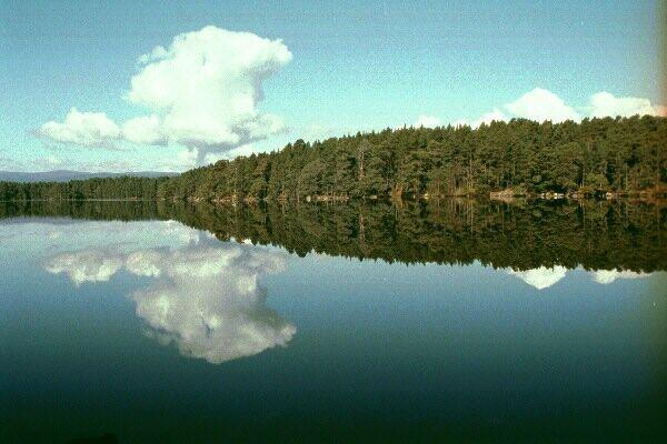 Loch Garten Lake