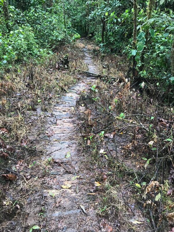 Muddy Trails, Isla la Escondida