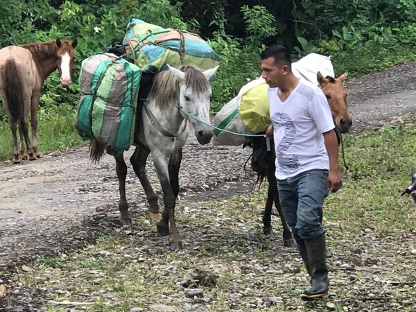 Our Pony Luggage Porters
