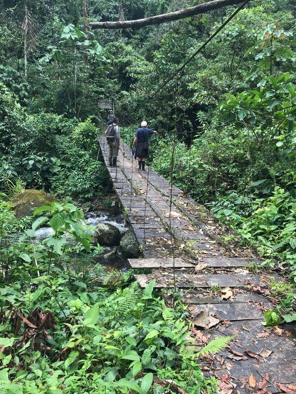 Isla la Escondida Bridge