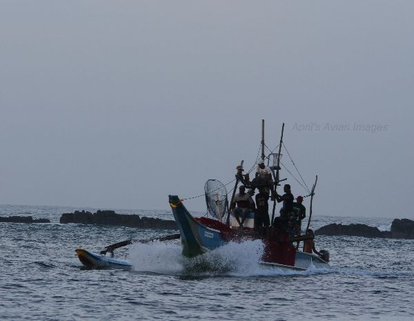 Fishermen,  Merissa