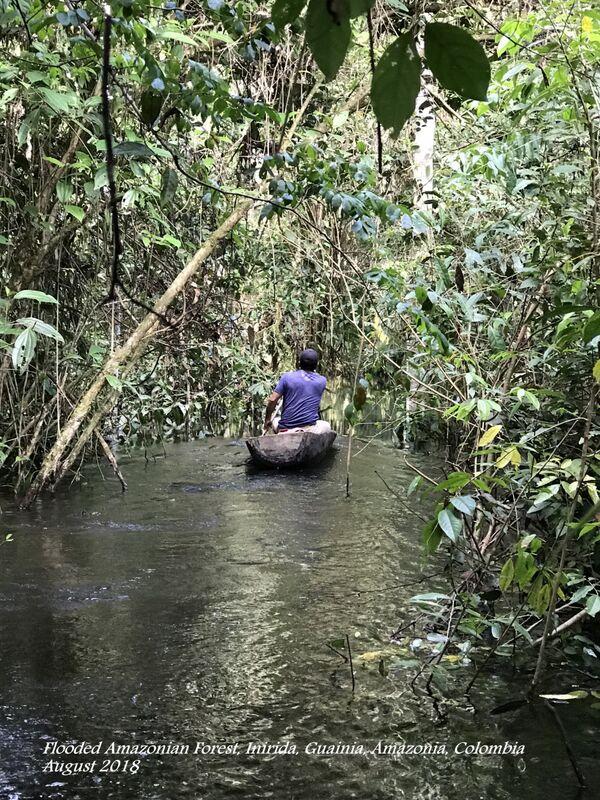 Inirida ~ River 22