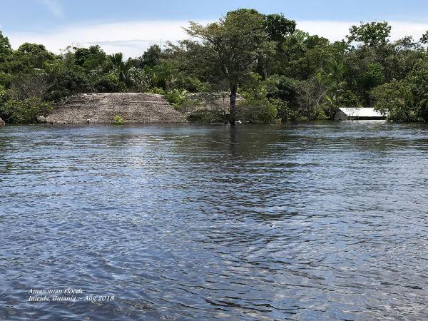 Inirida ~ River 30