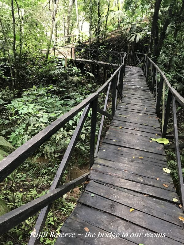 Pujill Reserve
