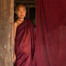 Shy Novice Monk