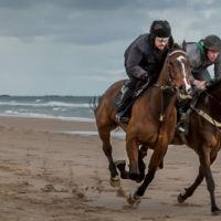 Beach-Horse-Race-4
