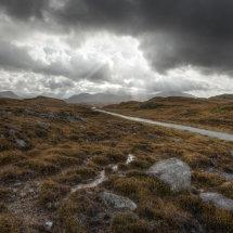 Harris Landscape