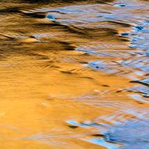 Liquid-Gold-2