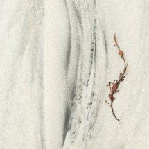 Sand  Detail