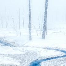 Tangle Creek 3