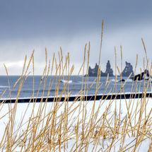 Víkurfjara Beach