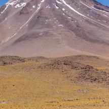 Vicunna Landscape