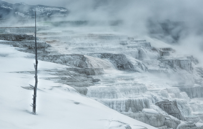 Yellowstone Mammoth Terrace warm-0440