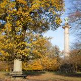 Bridgewater Monument  in autumn