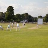 Cricket on Harpenden Common