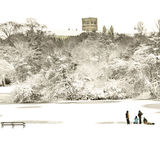 Verulamium Park, St Albans in the snow