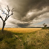 Storm clouds over Covehithe church
