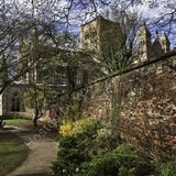 St Albans Cathedral from the Vintry Gardens