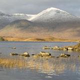 Rannoch Moor 1, Scotland