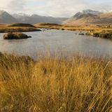 Rannoch Moor 2, Scotland